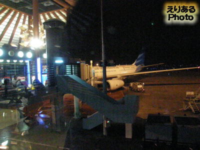 ジャカルタ・スカルノハッタ国際空港出発ゲートから見たガルーダインドネシア航空機