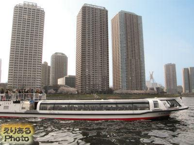 東京水辺ライン「こすもす」と大川端リバーシティ21